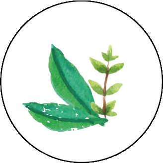 Végétal et naturel